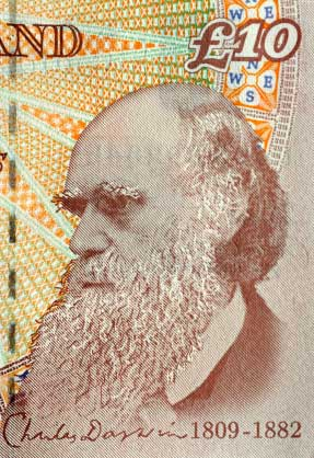 charles darwin theory of evolution should be taught in schools Dover area school district, the first case to test whether it is  how broadly  supported the theory of evolution is by recent developments  this country was  founded on christianity, and our students should be taught as such.